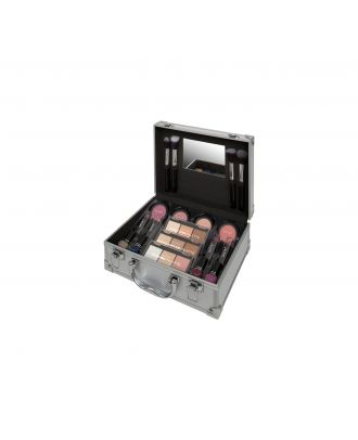 Technic Silver Colour Master Beauty Train Case